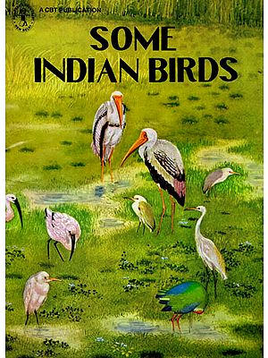 Some Indian Birds