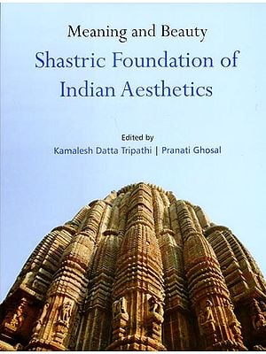 Meaning and Beauty Shastric Foundation of Indian Aesthetics