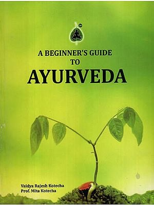 A Beginners Guide to Ayurveda