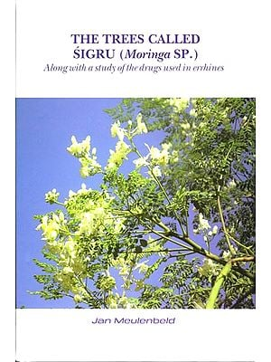 The Trees Called Sigru (Moringa SP.)