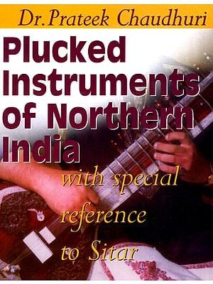 Plucked Instruments of Northern India with Special Reference to Sitar