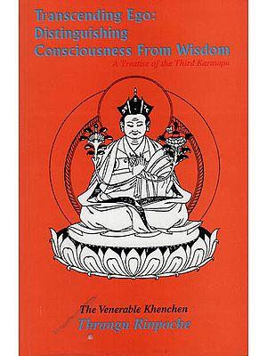Transcending Ego : Distinguishing Consciousness from Wisdom