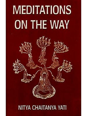 Meditations on the Way (A Contemplative and Personalized Study of the Tao Teh Ching)