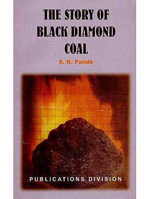The Story of Black Diamond Coal