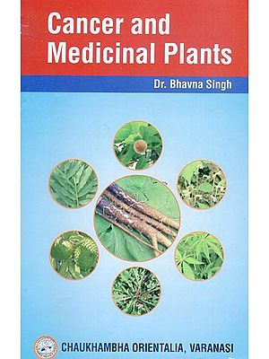 Cancer and Medicinal Plants