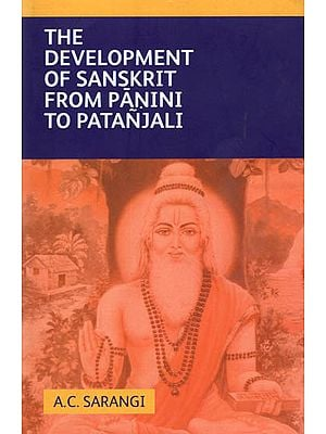 The Development of Sanskrit from Panini to Patanjali