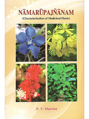 Namarupajnanam (Characterization of Medicinal Plants Based on Etymological Derivation of Names and Synonyms)