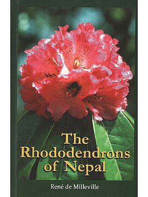 The Rhododendrons of Nepal