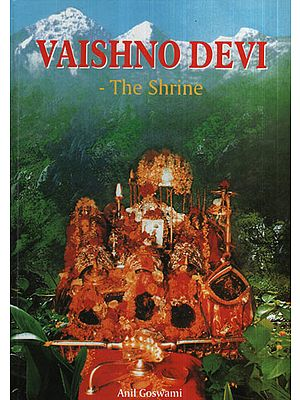 Vaishno Devi (The Shrine)
