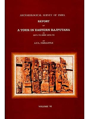 Archaeological Survey of India Report of A Tour in Eastern Rajputana in1871-72 and 1872-73 (Volume 6)