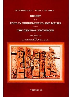 Archaeological Survey of India Report of a Tour in Bundelkhand and Malwa and in the Central Provinces (Volume 7)