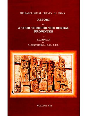 Archaeological Survey of India Report of A Tour Through the Bengal Provinces (Volume 8)