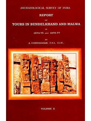 Archaeological Survey of India Report of Tours in Bundelkhand and Malwa in 1874-75 and 1876-77 (Volume 10)