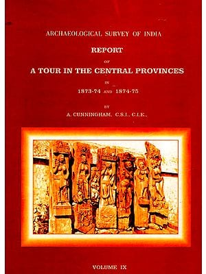 Archaeological Survey of India Report of A Tour in the Central Provinces in 1873-74 and 1874-75 (Volume 9)