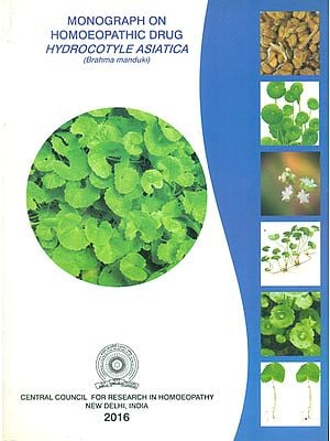 Monograph on Homoeopathic Drug Hydrocotyle Asiatica