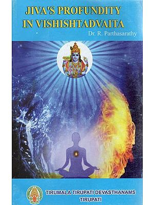 Jiva's Profundity in Vishishtadvaita