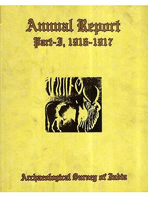 Annual Report of Archaeological Survey of India (Part- 1, 1916-1917)