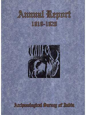 Annual Report of Archaeological Survey of India (1919-1920)