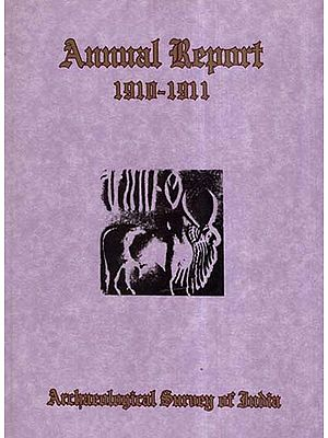 Annual Report of Archaeological Survey of India (1910-1911)