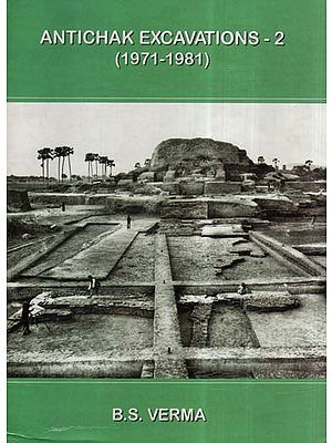 Antichak Excavations- 2 (1971-1981)