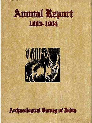 Annual Report of Archaeological Survey of India- 1903-04 (An Old and Rare Book)