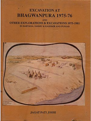 Excavation At Bhagwanpura 1975-76 (An Old and Rare Book)