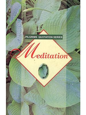 Pilgrims Quotation Series- Meditation