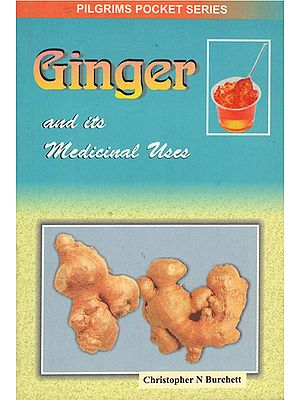 Ginger and its Medicinal Uses