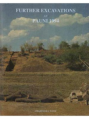 Further Excavations At Pauni 1994 (An Old and Rare Book)