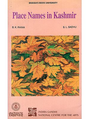 Place Names in Kashmir (An Old and Rare Book)