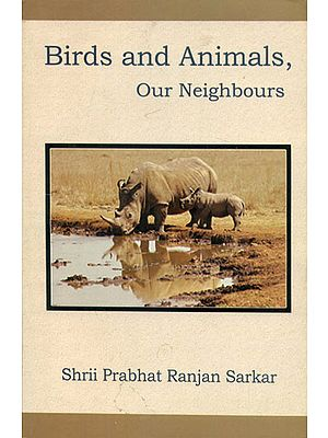 Birds and Animals, Our Neighbours