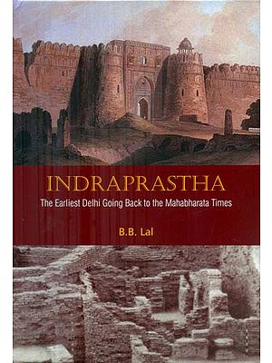 Indraprastha - The Earliest Delhi Going Back to the Mahabharata Times