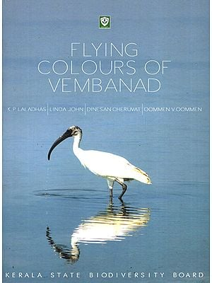 Flying Colours of Vembanad
