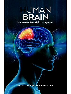 Human Brain- Apparent Boon of The Omnipotent