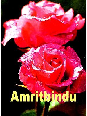 Amritbindu