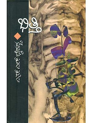 ಭಿತ್ತಿ: Bhitti - A Novel in Kannada