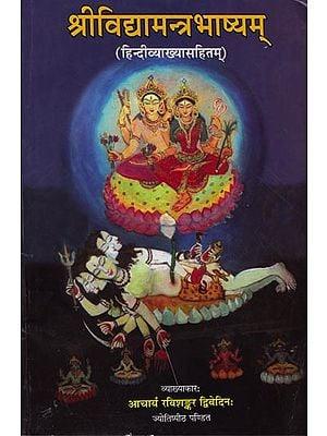 श्रीविद्यामन्त्रभाष्यम: Shri Vidya Mantra Bhashyam