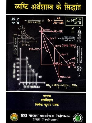 व्यष्टि अर्थशास्त्र के सिद्धांत: Theory of Macro Economics