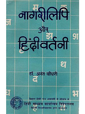 नागरी लिपि और हिंदी वर्तनी: Nagari Script and Hindi Script (An Old Book)