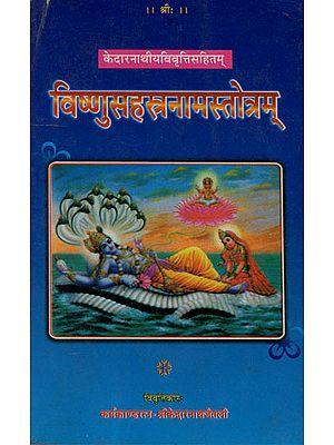 विष्णुसहस्त्रनामस्तोत्रम्: Visnu Sahasranamam Stotram (An Old Books)
