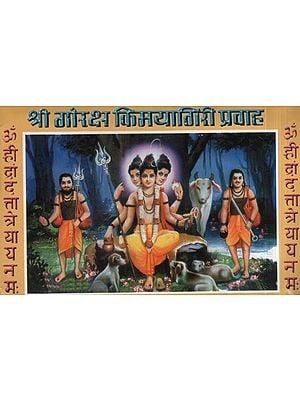 श्री गोरक्ष किमयागिरी प्रवाह - Shri Goraksha Alchemy Stream (Marathi)