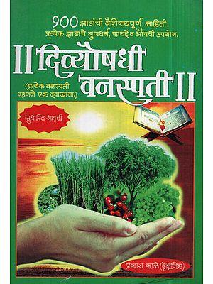 दिव्योषधी वनस्पती - The Herb (Marathi)