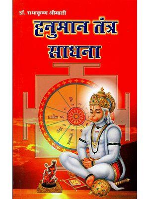 हनुमान यंत्र साधना: Hanuman Yantra Sadhana