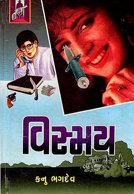 Vismay - Novel (Gujarati)