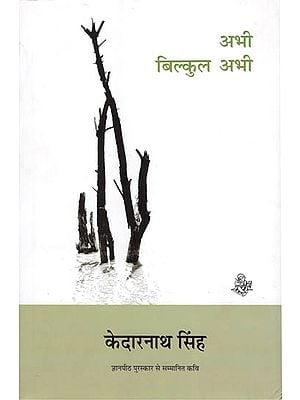 अभी बिलकुल अभी: Now Right Now (Collection of Hindi Poems)