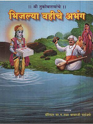 भिजल्या वहीचे अभंग - Abandoned Wetlands (Marathi)