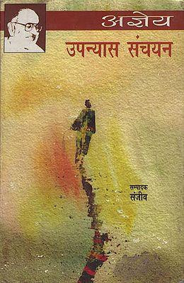 उपन्यास संचयन: Upanyas Sanchayan