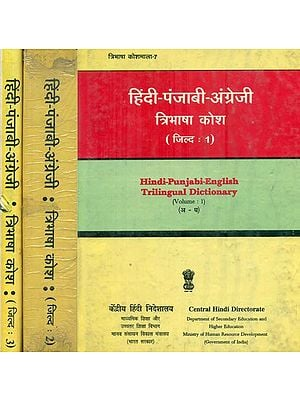 हिंदी पंजाबी अंग्रेजी : Hindi, Punjabi and English Dictionary in Set of 3  Volumes (An Old and Rare Book)