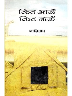 कित आऊँ कित जाऊँ: How Much Should I Go (A Novel)