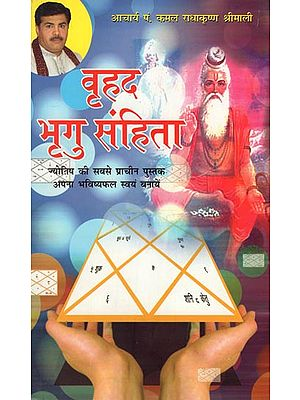 वृहद भृगु संहिता: Large Bhrigu Sanhita